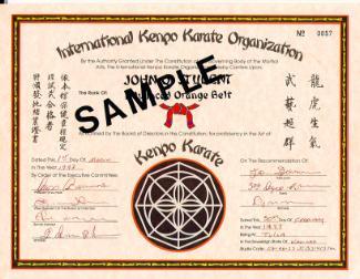 Belt Ranks and Titles – Kenpo Budokan Karate |American Kenpo Belt Ranking